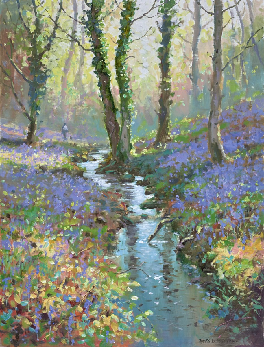 Bluebell Stream II by james preston -  sized 16x21 inches. Available from Whitewall Galleries